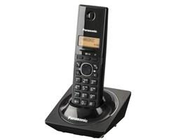 Panasonic KX-TG1711FXB (černý)